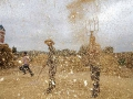 集打場上的冬麥
