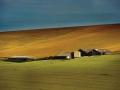 英國南方矮丘