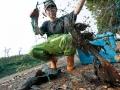 棄養的琵琶鼠魚