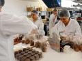 巧克力工廠遵循精緻製程