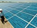 太陽光電廠