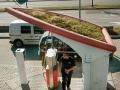 生質沼氣站