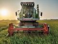 機械採收蕎麥