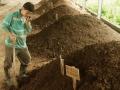 堆肥自然熟化