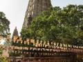 摩訶菩提寺廣場