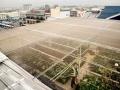 網室及灌溉系統