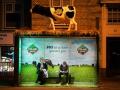 機食品形象廣告