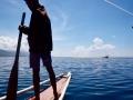 水手導引著螃蟹船避開水草的糾纏