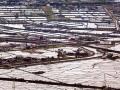 精進各項灌溉技術