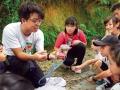 认识周遭生物及环境