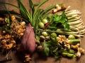 台南大內農場各式香料植物